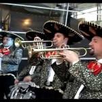 Artisti nunta - impresariat-los-platanos-nunta-botez-petrecere-aniversare-banchet-concert-recital-spectacol-primarii-zile-localitati